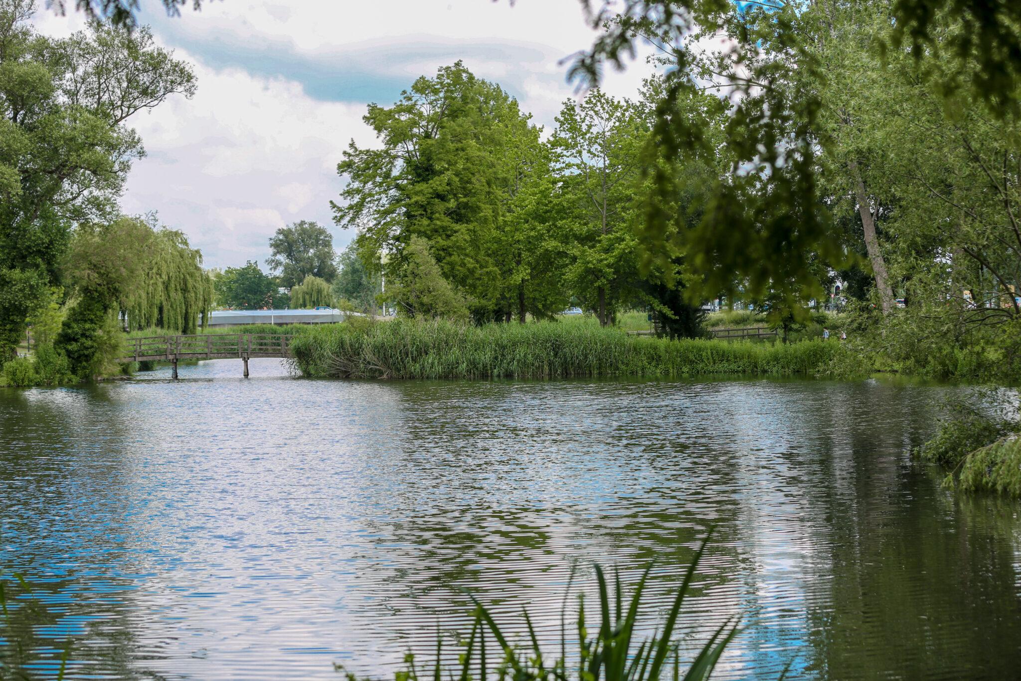 Het park tegenover Het Venenhuis in Deventer