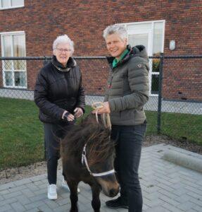 Foto van blogschrijfster en verzorgende IG Ans Meijerink die bij Het Beekdalhuis in Wierden, locatie van Dagelijks Leven, samen met een bewoonster een pony aait